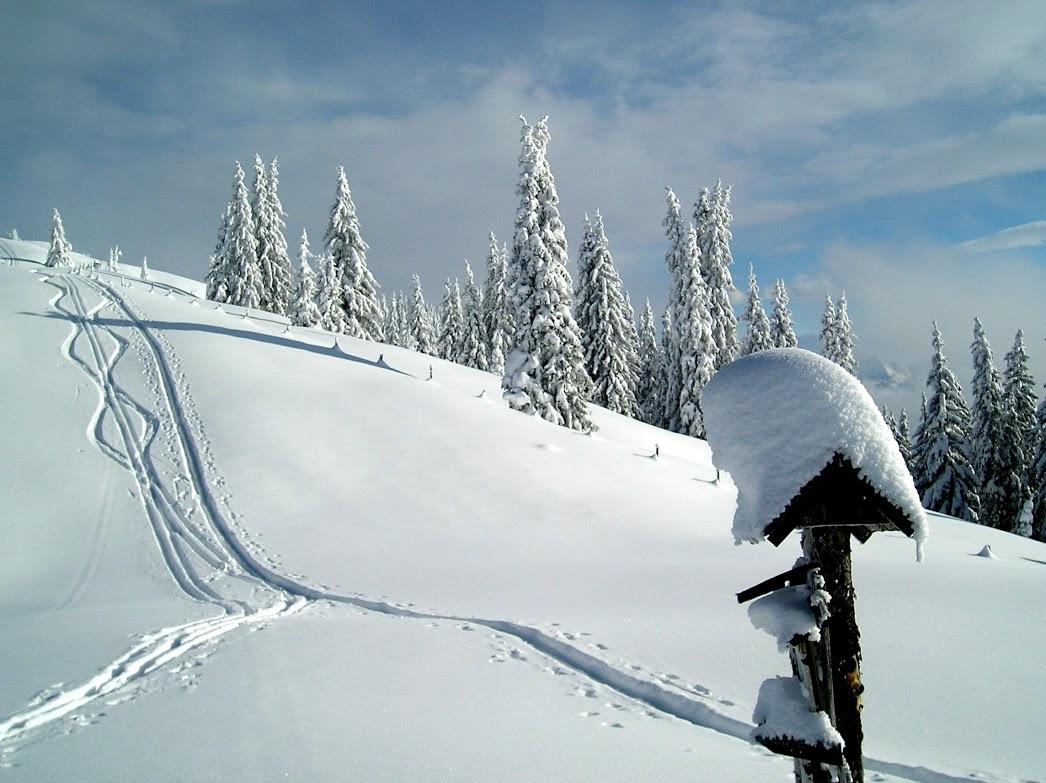 Skitour (ge)fällig?